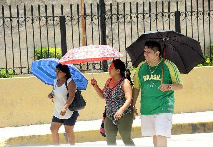 El viernes se registró en Ticul la temperatura más alta en Yucatán durante la semana: 41.5 grados. (SIPSE)