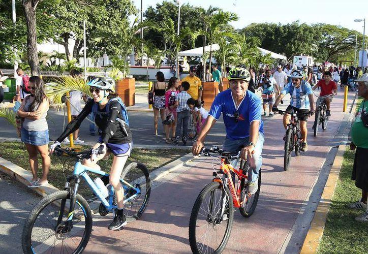 Se han realizado diferente programas para crear conciencia en el cuidado del medio ambiente en Cancún. (Redacción/SIPSE)