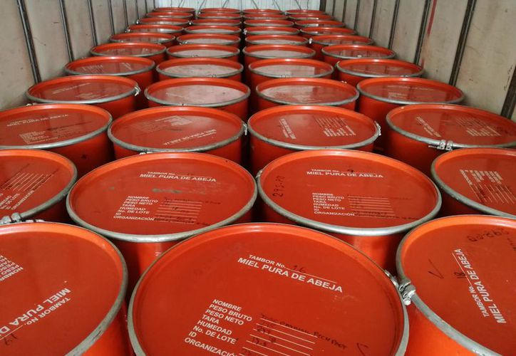 Durante el primer semestre de 2018  se exportaron 140.7 toneladas de miel. (Benjamín Pat/SIPSE)