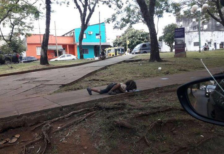 La  imagen fue captada el pasado 13 de diciembre por una periodista de Misiones Online. (Vanguardia)
