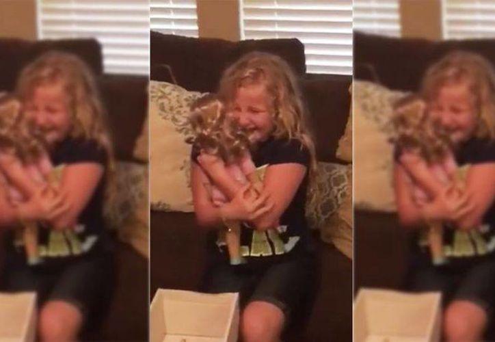 La adorable reacción de Emma al ver su nueva muñeca ha sido vista por millones de personas en Facebook. (mashable.com)