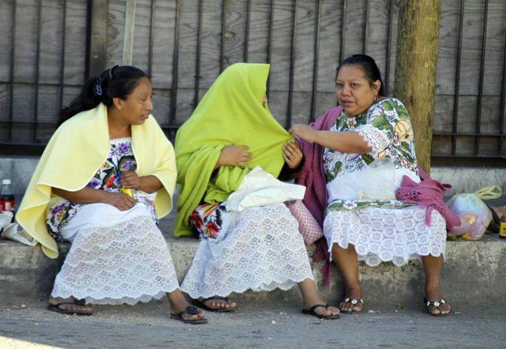 Las bajas temperaturas golpearon fuerte a comunidades del sur de Yucatán. (Christian Ayala/SIPSE)