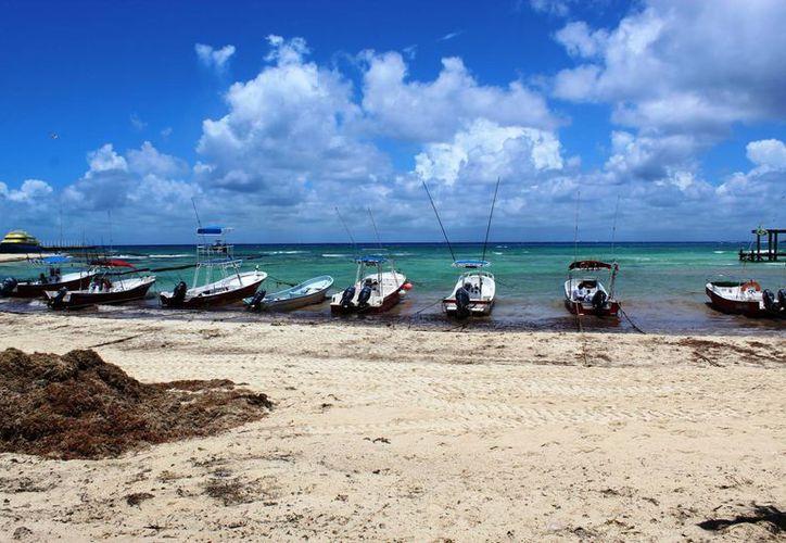 Se colocaron las estructuras con la ayuda de las embarcaciones. (Octavio Martínez/SIPSE)