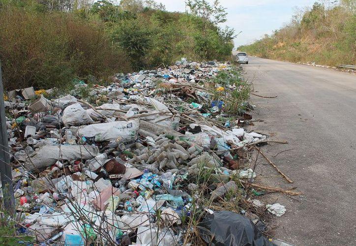 Delegados solicitarán ayuda a la comuna othonense para retirar tiraderos clandestinos. (Juan Rodrígiuez/SIPSE)