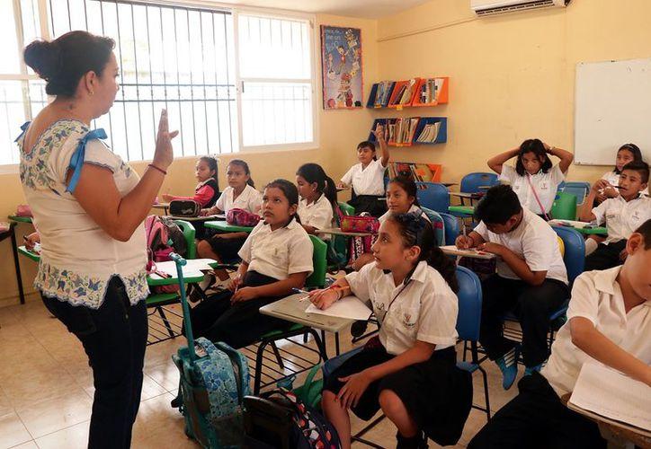 La enseñanza de la maya depende de cada colegio. (Foto: Milenio Novedades)