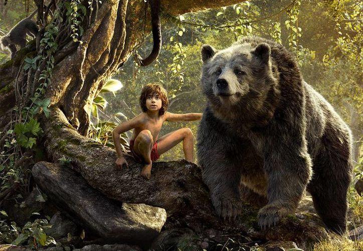 Fragmento de la cinta 'El libro de la selva', protagonizada por el joven actor de origen indio Neel Sethi.(Disney)