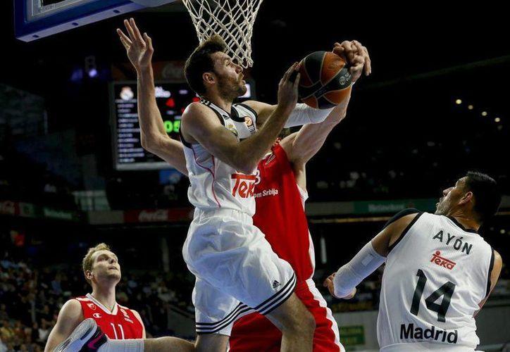 Sin emplearse a fondo Real Madrid ganó a Estrella Roja en la Euroliga. En la jugada que aparece en la foto interviene el mexicano Gustavo Ayón. (baloncesto.as.com)