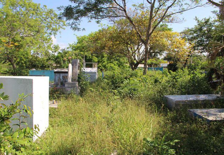 El camposanto está invadido de maleza y basura. (Carlos Castillo/SIPSE)