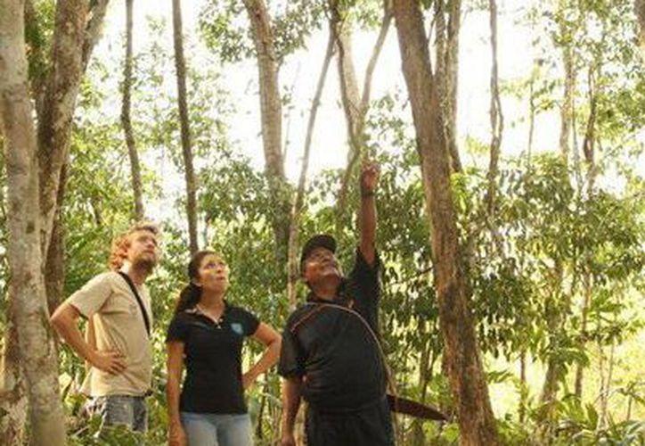 Los guardaparques de la Conanp se encargan de proteger las áreas naturales y asombrar a los visitantes poniendo al descubierto sus misterios. (Facebook oficial)