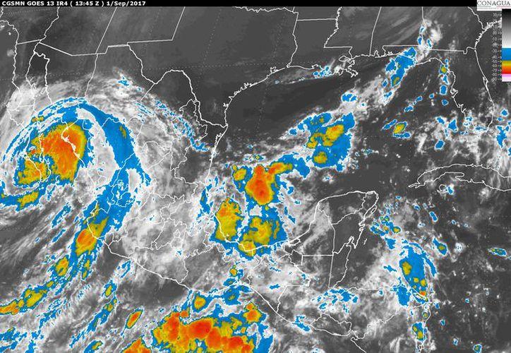 Para hoy se esperan tormentas dispersas en Chetumal. (Conagua)