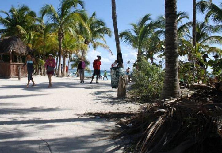 El personal de la Profepa contabilizó a 286 turistas para avistamiento de tortuga marina y 450 visitantes para nado con snorkel. (Sara Cauich/SIPSE)