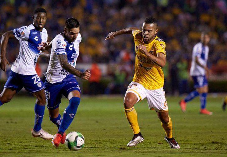 Tigres y Rayados llegan a la semifinal como el segundo y tercer mejores lugares del torneo en su fase regular (Fotos: @Tigres Oficial)