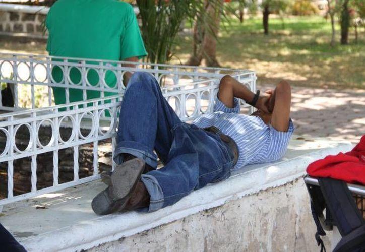 De acuerdo a una especialista del Instituto de Investigaciones Biomédicas de la UNAM, dormir poco puede llevar a padecer cáncer. (SIPSE/Foto de contexto)