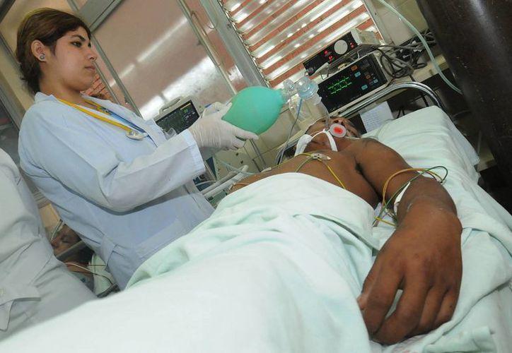 El chikunguya no provoca la muerte, pero se han registrado decesos por complicaciones por otras enfermedades ya existentes en los pacientes. Imagen de contexto, solo para fines ilustrativos. (EFE/Archivo)