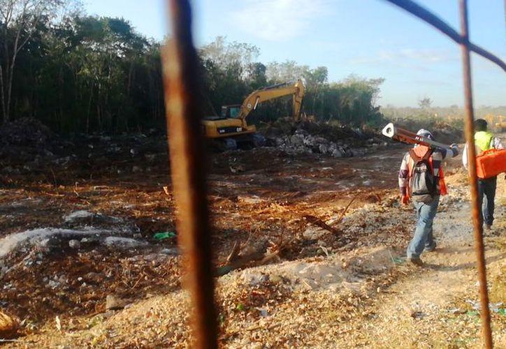 Han estado desmontando el área con maquinaria pesada. (Daniel Pacheco/SIPSE)