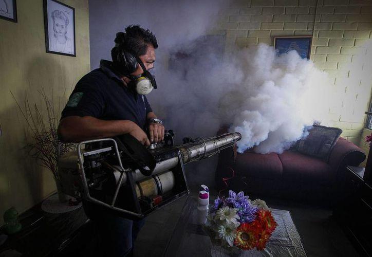 La función de los agentes, tanto civiles como militares, es visitar casa por casa para identificar y destruir los criaderos del mosquito Aedes aegypti, el cual transmite el Zika, dengue y chikunguña. (Archivo/EFE)