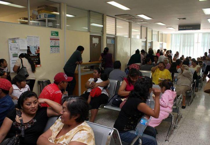 Del 14 al 20 de este mes se incrementaron las consultas por dengue en Yucatán. (Milenio Novedades)