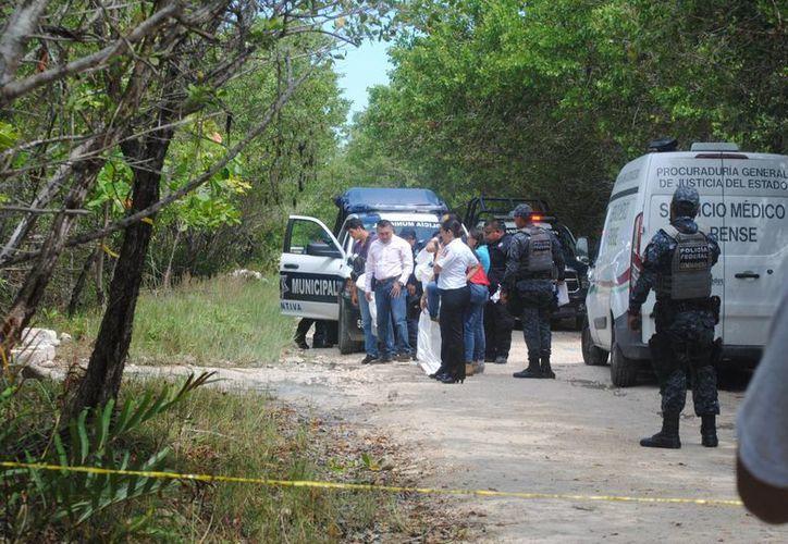 En un área verde, cerca de la Laguna Manatí, fue hallado un cuerpo sin vida. (Eric Galindo/SIPSE)