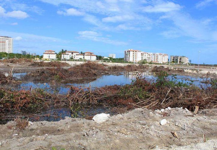Ya quieren lucrar con las afectaciones a la zona del proyecto. (Luis Soto/SIPSE)