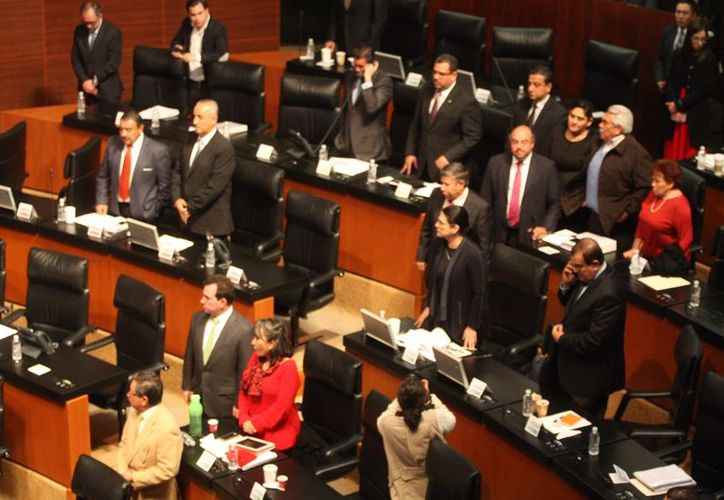 """La parlamentaria consideró que su Comisión """"tiene mano en la dictaminación de dicha minuta"""". (Foto: La Jornada)"""
