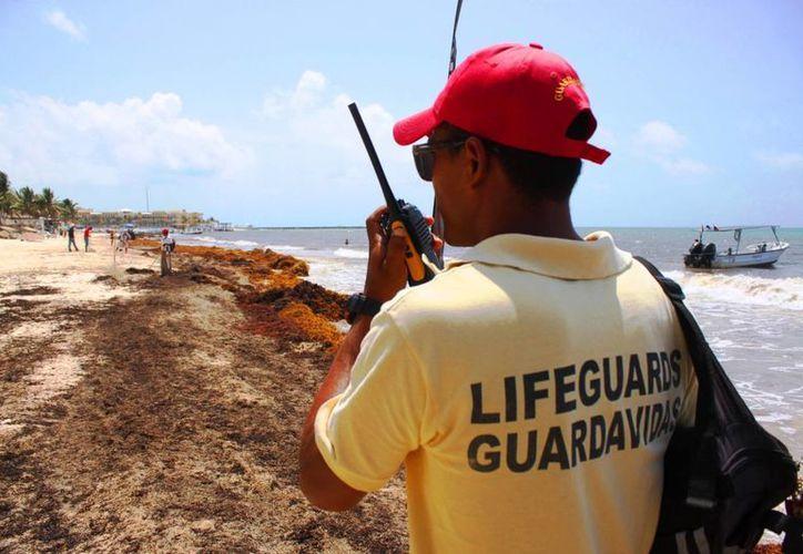 La Dirección de Protección Civil se dice preparada para el operativo vacacional de verano. (Daniel Pacheco/SIPSE)