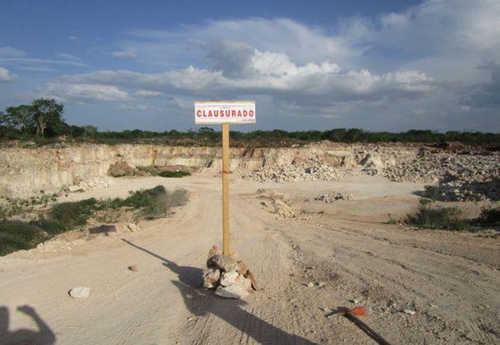 Profepa clausuró un banco de materiales, en Ticopó. Removieron, sin permiso, más de 10 mil metros cuadrados de vegetación. (Cortesía)