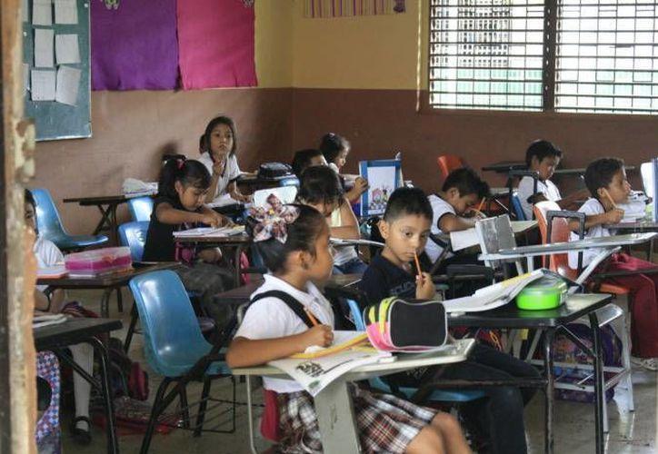 El plazo de las inscripciones para los primeros grados de educación básica es el 15 de febrero. (Redacción/SIPSE)