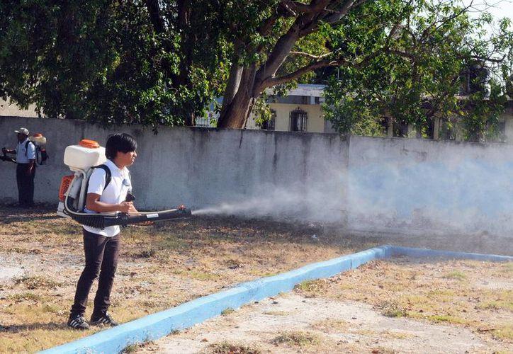 Yucatán registra una reducción de casos: en lo que va del año son mil 21, por dos mil 544 registrados en 2013 en el mismo período. Las fumigaciones contra el dengue ayudan al combate del mosco. (Milenio Novedades)
