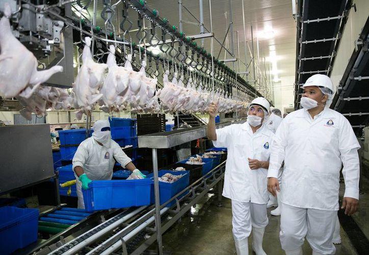 El gobernador Rolando Zapata inspecciona una de las plantas que durante el 2016 abrieron sus puertas y generaron cientos de empleos formales. (DGCS)