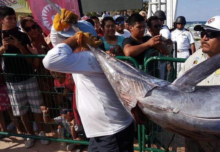 El torneo de pesca deportiva de Puerto Morelos es uno de los más exitosos. (Raúl Caballero/SIPSE)