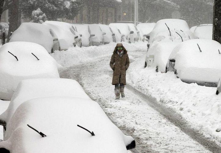 Millones de residentes, dueños de negocios y trabajadores salieron de sus casas el domingo luego de una enorme tormenta de nieve que paralizó a Washington, Nueva York. (Agencias)