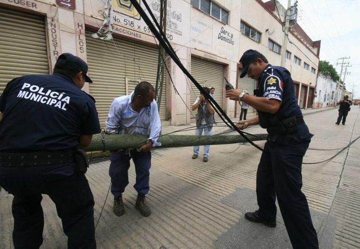 Agentes municipales retiran el poste que derribó un camión de carga. (SIPSE)
