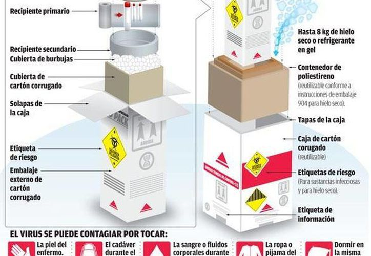 En esta gráfica se muestra el procedimiento a seguir para trasladar muestras de sangre en caso de ébola. (Milenio)