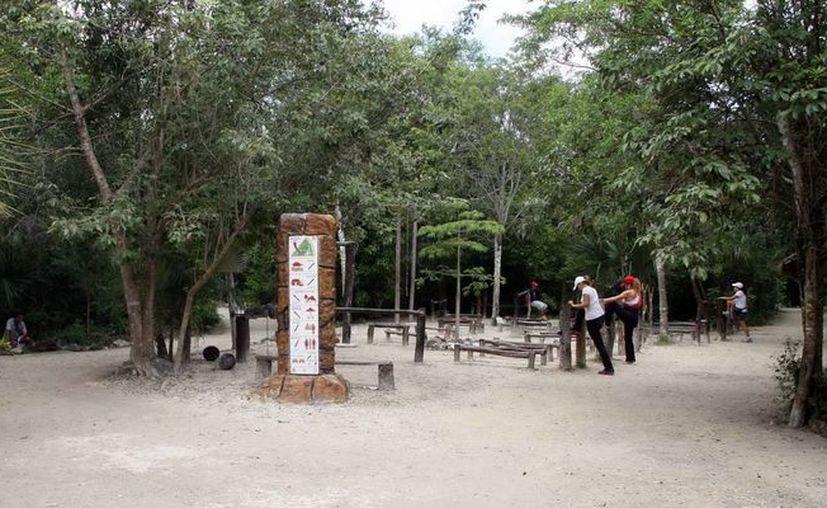 Prevén que para 2014 se concrete un Plan de Manejo para el Parque Urbano Kabah. (Cortesía/SIPSE)
