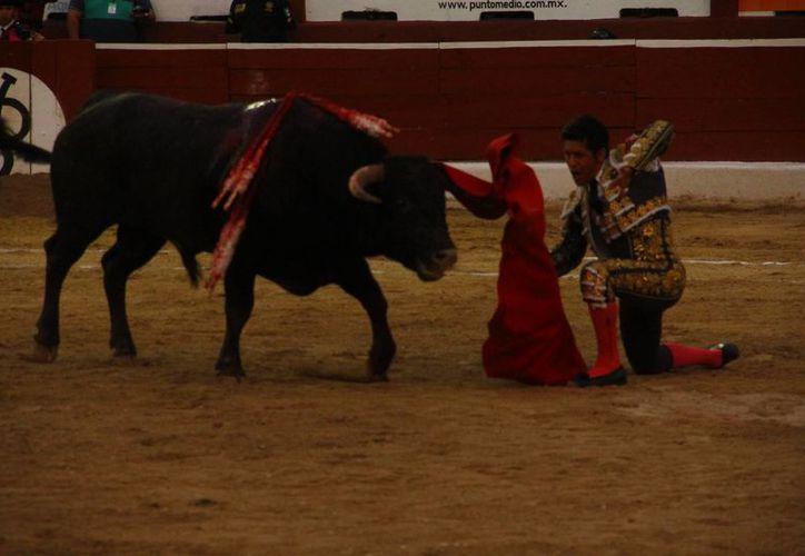 Uriel Moreno, (a) 'El Zapata',  hizo un buen manejo del capote y aún mejor de las banderillas. (Mienio Novedades)
