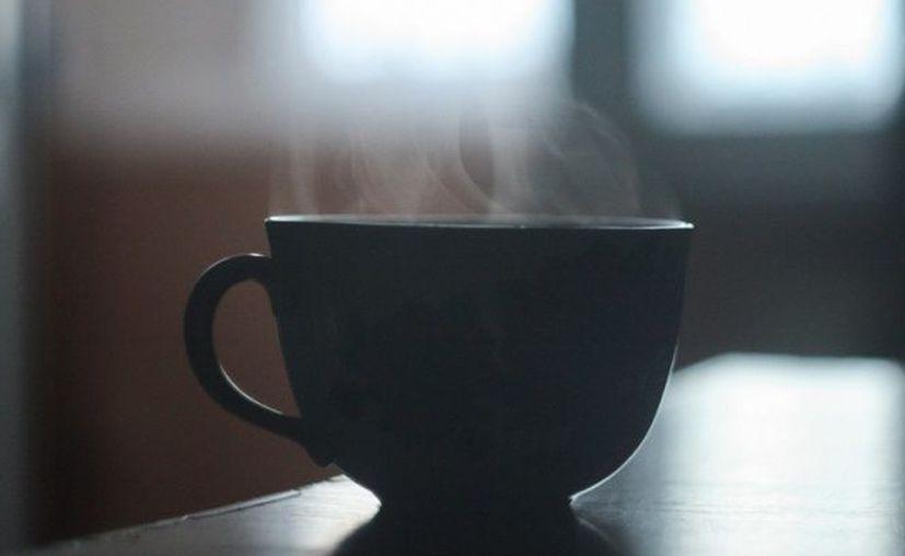 Aunque ambas bebidas tienen cafeína no todos lo perciben igual. (Excélsior)