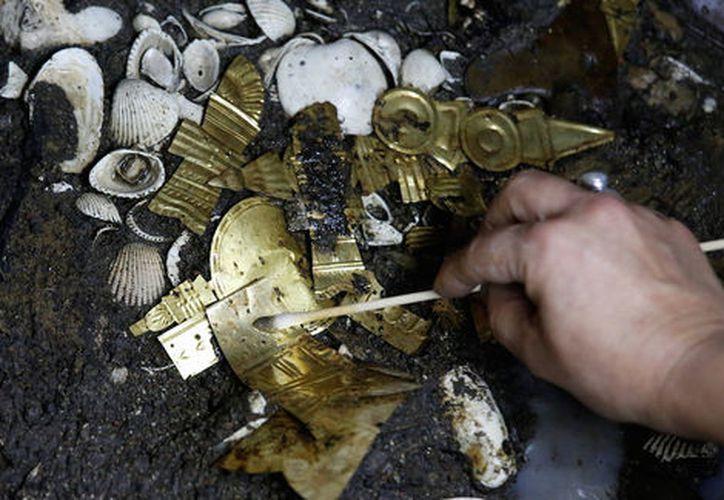 Una ofrenda compuesta de un lobo enterrado con una veintena de joyas de oro fue hallada cerca del zócalo capitalino.  (Milenio.com)