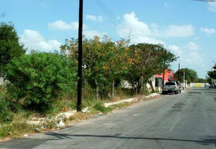 La Comuna ha detectado al menos 10 mil inmuebles abandonados en Mérida. (Milenio Novedades)