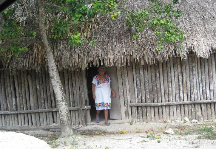 La Conavi desmintió la existencia de algún programa y la posibilidad de apoyo para vivienda. (Javier Ortiz/SIPSE)