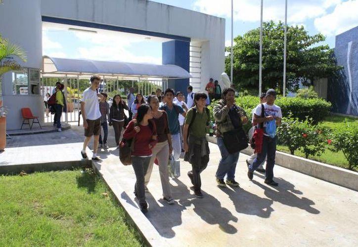 La institución cuenta con una biblioteca con más de 11 mil libros. (Sergio Orozco/SIPSE)
