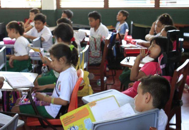 Se han reportado casos de piojos en alumnos de escuelas primarias de Chetumal. (Harold Alcocer/SIPSE)