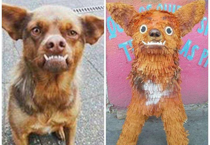 La piñata del popular perrito se vende en Reynosa ¡en 500 pesos! (Foto: Excélsior)