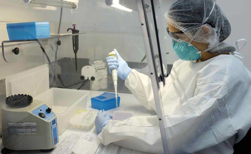 La Agencia de Alimentos y Medicamentos (FDA, por su sigla en inglés) anunció que todas las donaciones de sangre pasarán por una revisión para detectar la presencia del virus del zika. (EFE/Archivo)
