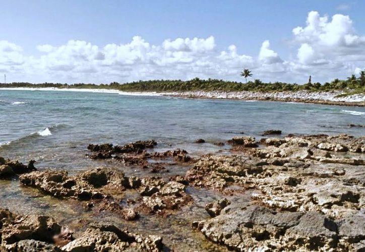 Ambientalistas se han opuesto a proyectos en la zona, por ser santuario de la tortuga marina. (Octavio Martínez)