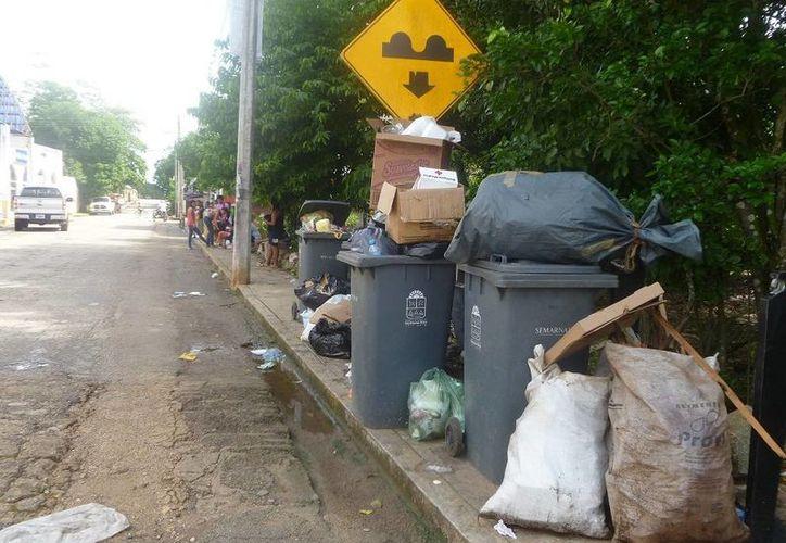 La basura origina una pestilencia en el mercado municipal. (Raúl Balam/SIPSE)