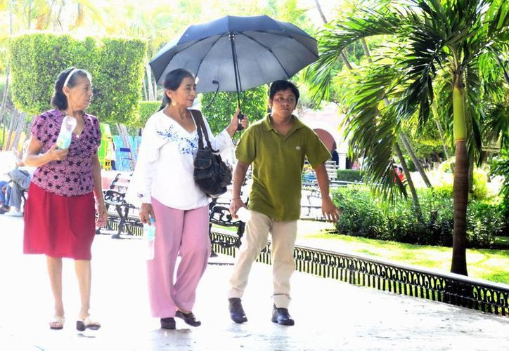 El sábado se registró en Mérida una temperatura de 34.5 grados como máxima. (Milenio Novedades)
