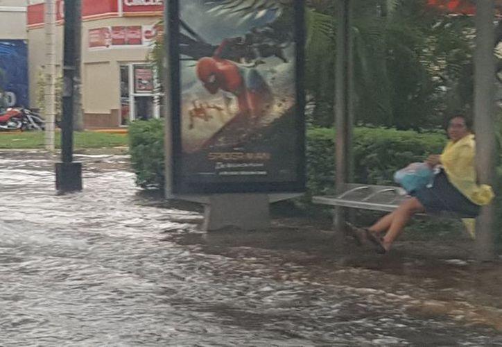Las lluvias cargadas continuarán apareciendo en los próximos días. (Cortesía: Mariana Nuñez)