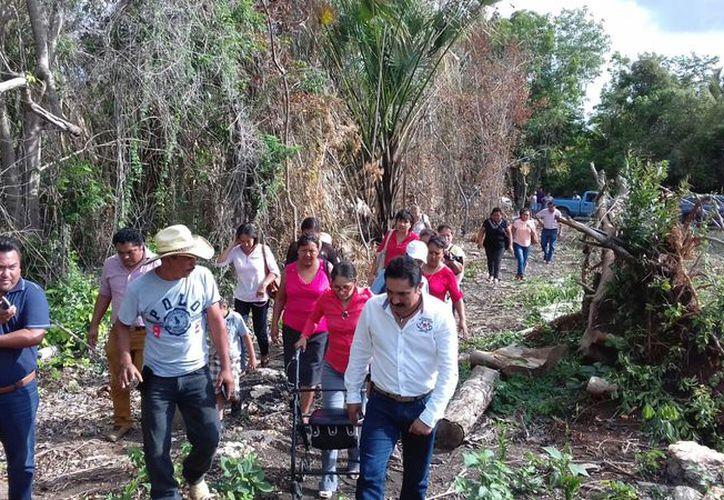 Las emprendedoras cultivan actualmente una superficie de 36 hectáreas. (Benjamín Pat / SIPSE)