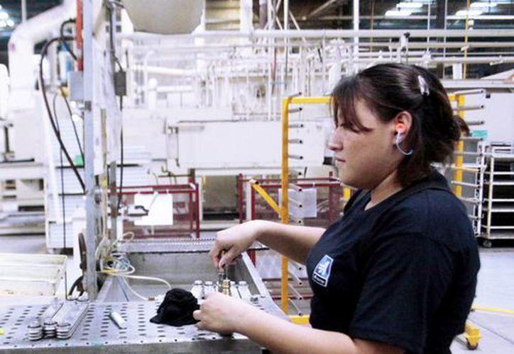 Muchos yucatecos laboran en Q. Roo. (Milenio Novedades)