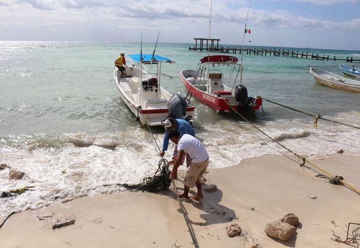 Los hoteleros de Playa del Carmen y Cancún piden cuentas claras sobre el uso que se da a los recursos que pagan a la Dirección de la Zofemat. (Adrián Barreto/SIPSE)